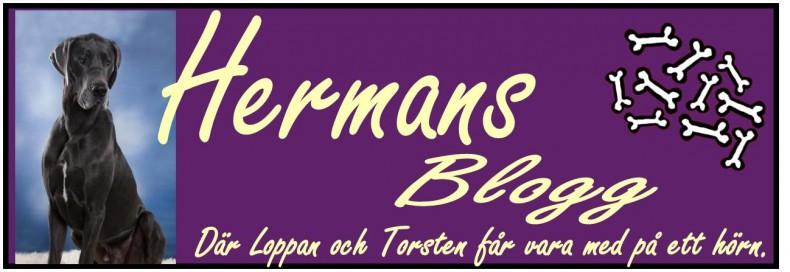Loppan & Hermans blogg